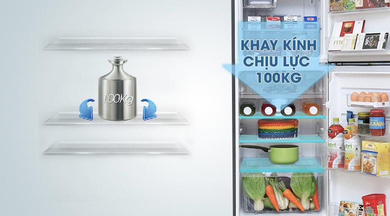 Khay kệ an toàn, chắc chắn - Tủ lạnh Electrolux Inverter 211 lít ETB2100MG
