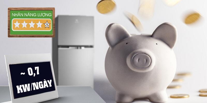 Electrolux ETB2100MG có NutriFresh Inverter chỉ tiêu thụ khoảng 0.7 kW điện mỗi ngày