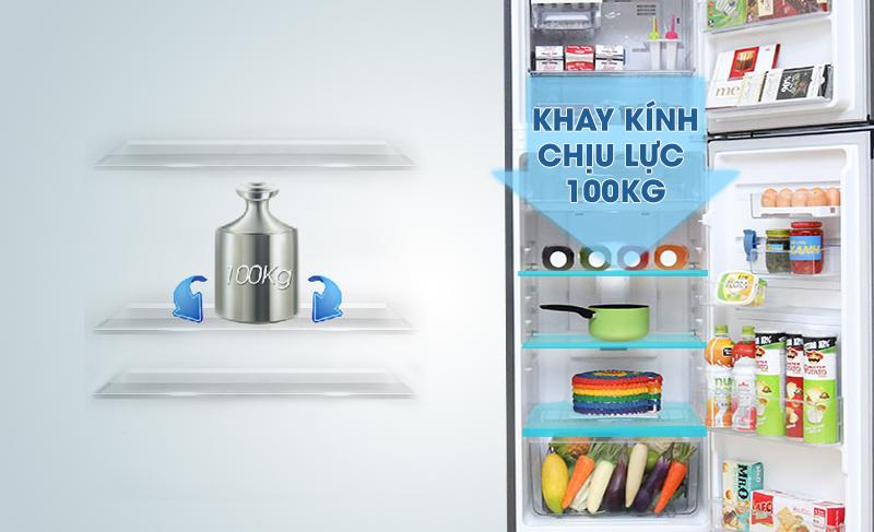 Tủ lạnh Electrolux ETB2600MG có khay kính chịu lực hiệu quả