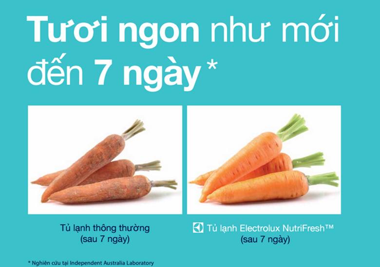 NutriFresh Inverter đem đến thời gian bảo quản thực phẩm hơn 7 ngày