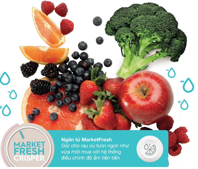 Market Fresh đi cùng với Fresh Shield giúp giữ độ ẩm thích hợp cho ngăn tủ rau quả