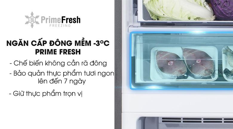 ngăn đông mềm Prime Fresh - Tủ lạnh Panasonic Inverter 255 lít NR-BV288GKVN