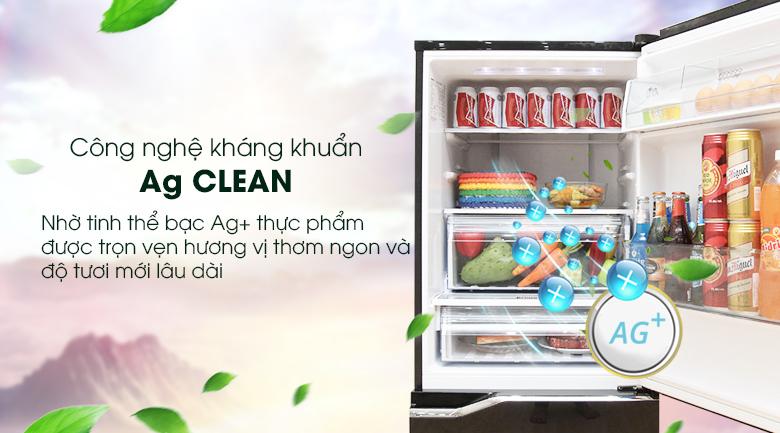Diệt khuẩn khử mùi mạnh mẽ - Tủ lạnh Panasonic Inverter 255 lít NR-BV288GKVN