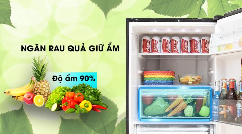 Ngăn rau củ - Tủ lạnh Panasonic Inverter 255 lít NR-BV288GKVN
