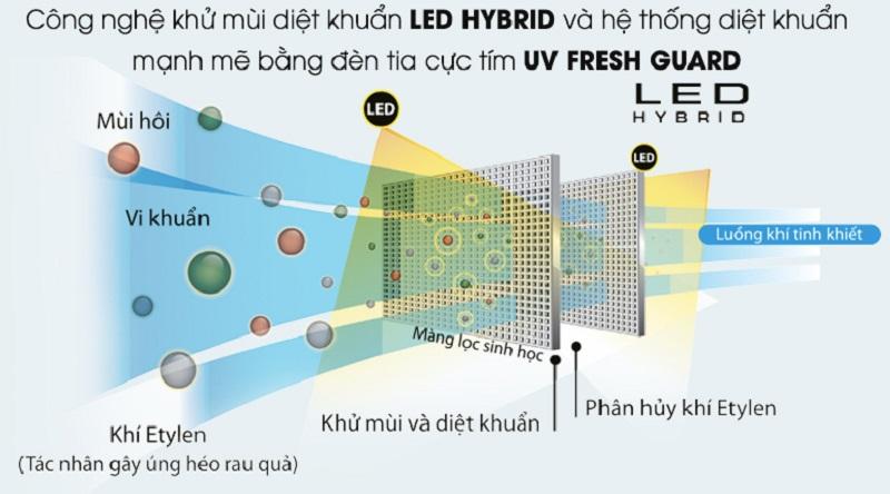 Kháng khuẩn và khử mùi bằng Led Hybrid - Tủ lạnh Toshiba Inverter 468 lít GR-HG52VDZ XK