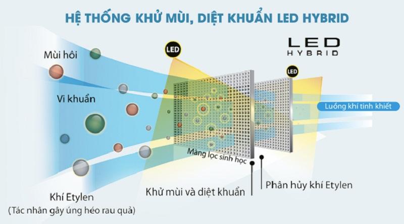 Bảo vệ sức khỏe với hệ thống LED HYBRID - Tủ lạnh Toshiba Inverter 505 lít GR-HG55VDZ GG