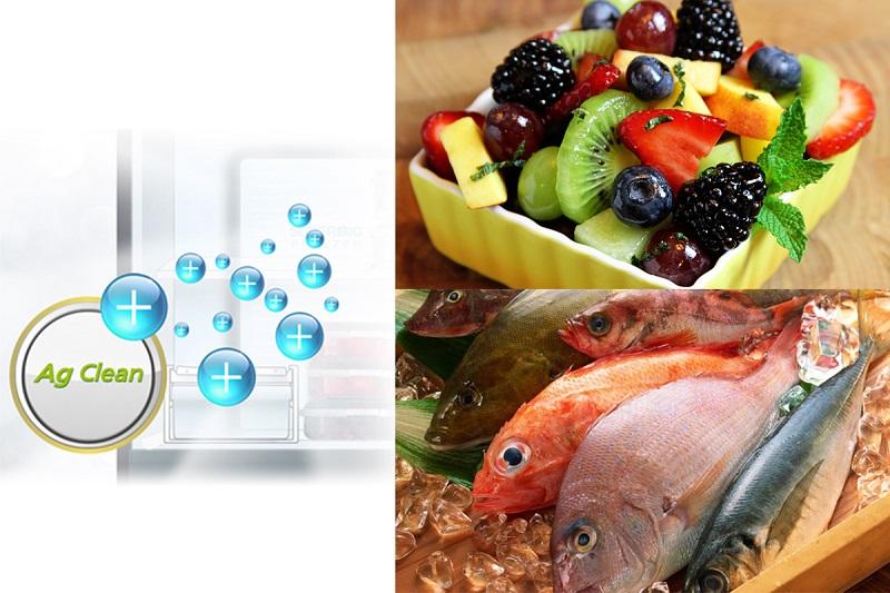 Hệ thống kháng khuẩn tinh thể bạc Ag Clean