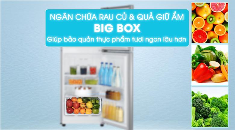 Big Box - Tủ lạnh Samsung Inverter 208 lít RT20K300ASE/SV