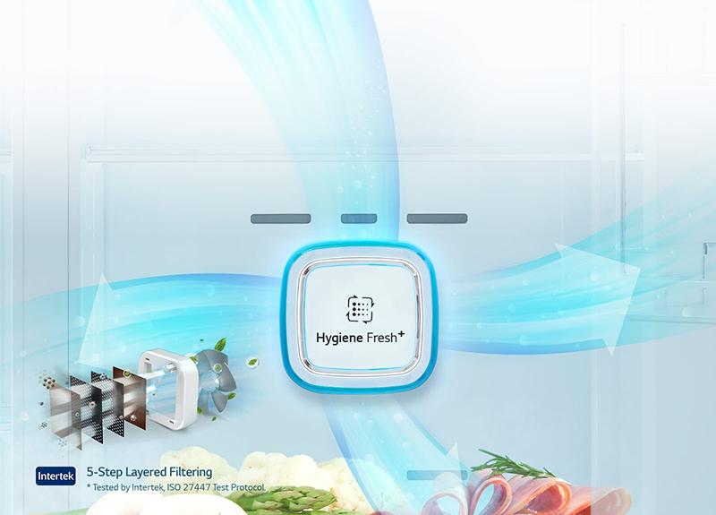 Bộ lọc kháng khuẩn Hygiene Fresh