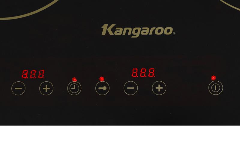 kangaroo-kg499n-6