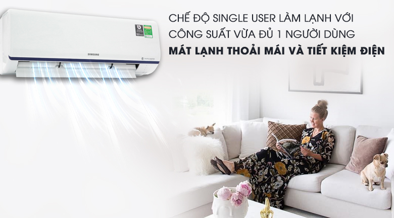 Single User - Máy lạnh Samsung Inverter 1 HP AR10RYFTAURNSV