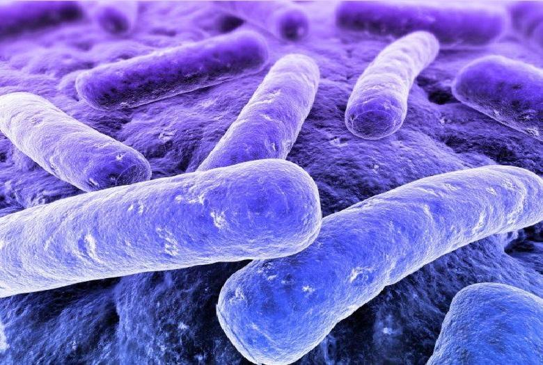 Kháng khuẩn và đảm bảo độ ẩm thích hợp nhờ tấm lọc bụi, lưới lọc hai lớp và máy phát quang Nano Aqua