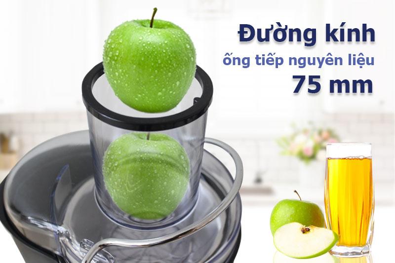 Ống tiếp nguyên liệu có đường kính 75 mm - Máy ép trái cây Pensonic PJ-600