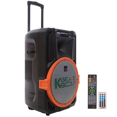 Loa kéo karaoke 300 W Acnos KB39S