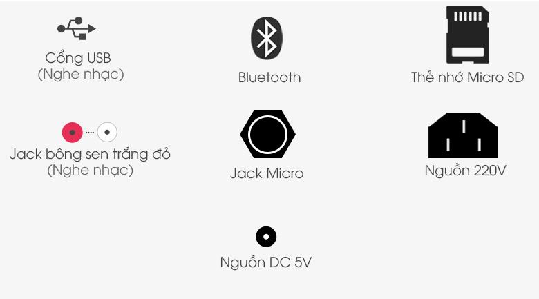 Loa điện Karaoke Birici MX-400 300W - Cổng kết nối