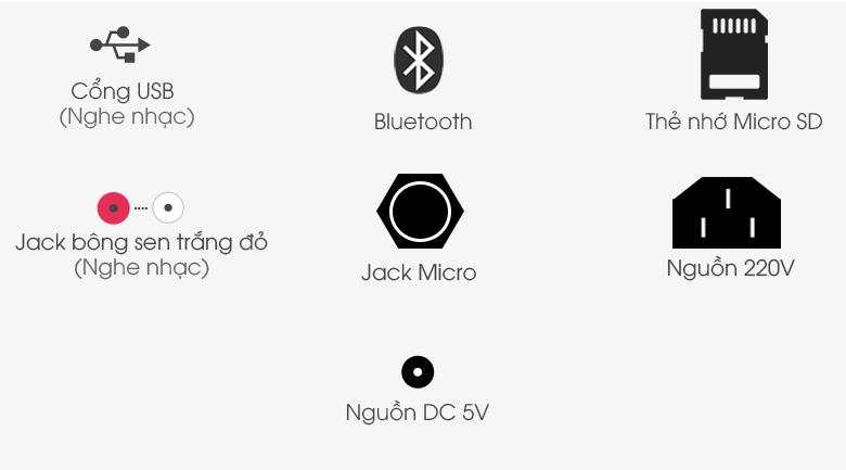 Loa điện Karaoke Birici MX-700 450W - Cổng kết nối