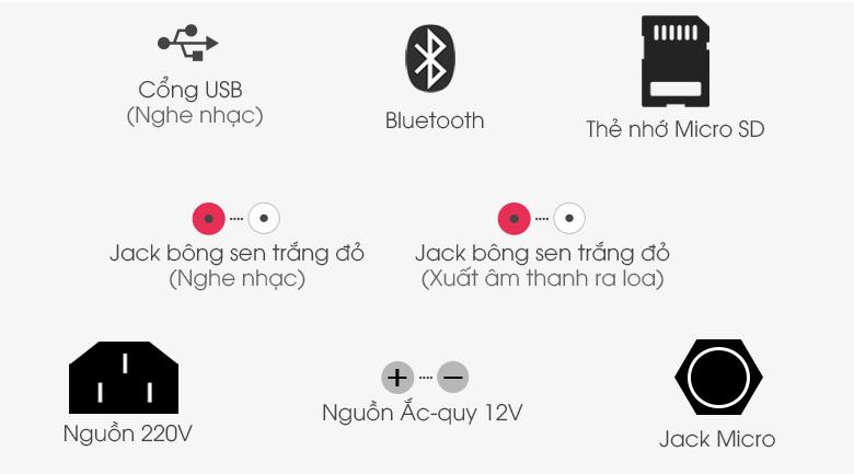 Loa Kéo Karaoke Acnos CBX15G 450W - Cổng kết nối