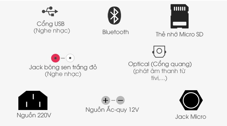 Loa Kéo Karaoke Acnos CBZ16G 650W - Cổng kết nối