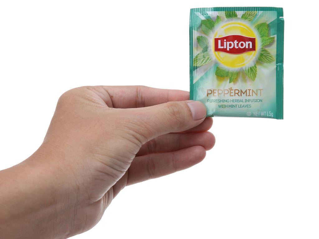 Trà bạc hà Lipton Peppermint hộp 37.5g (1.5g x 25 túi) 5