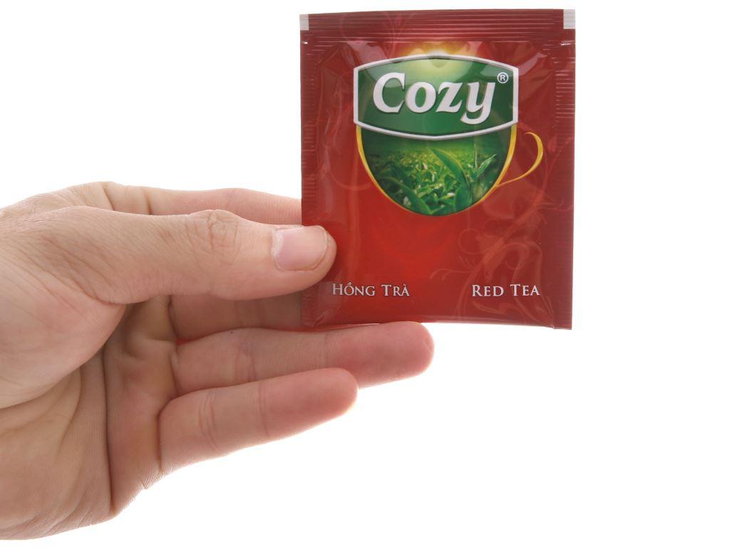 Hồng trà Cozy hộp 50g (2g x 25 túi) 4