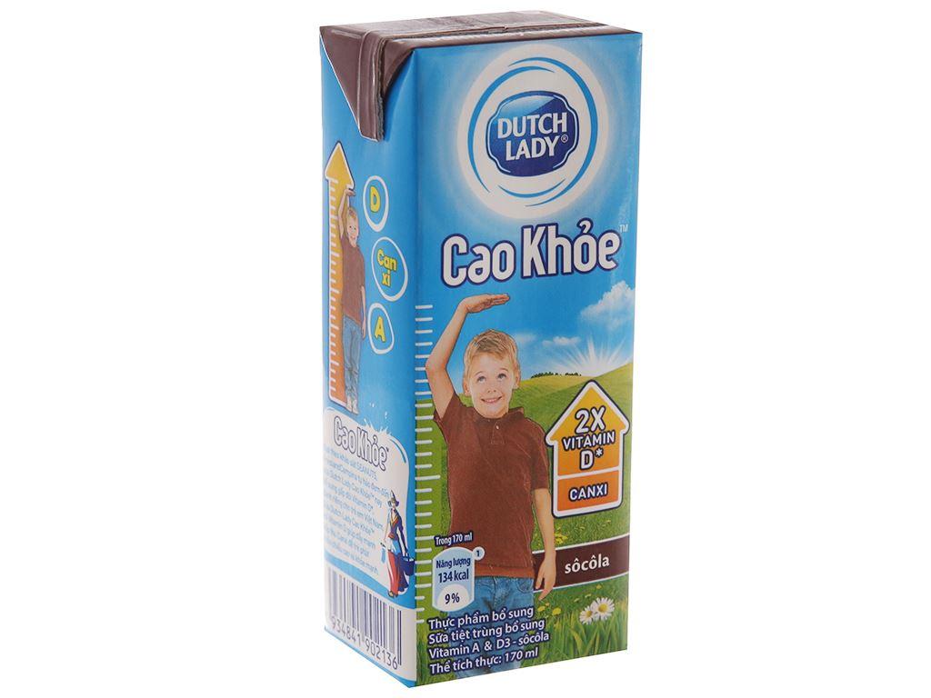 Sữa tiệt trùng Dutch Lady Cao khoẻ socola hộp 170ml 2