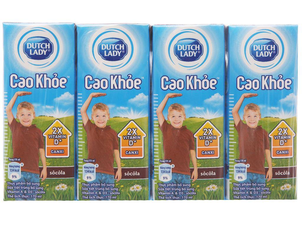 Lốc 4 hộp sữa tiệt trùng Dutch Lady Cao khoẻ sô cô la 170ml 2