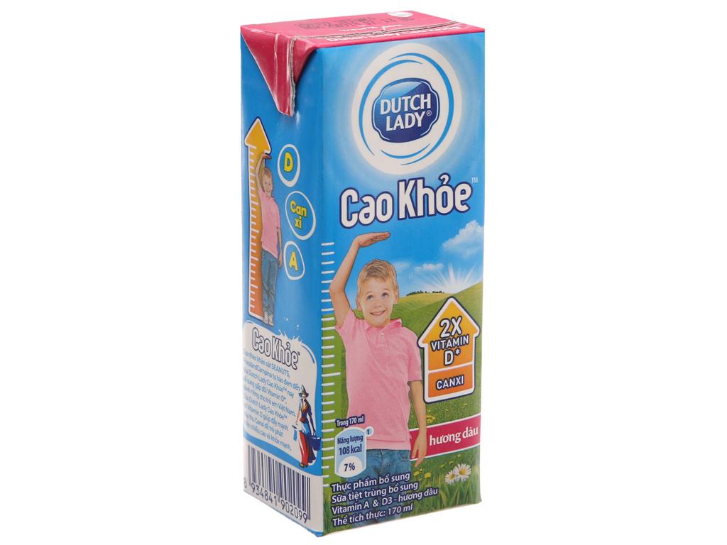 Sữa tiệt trùng Dutch Lady Cao khoẻ dâu hộp 170ml 2