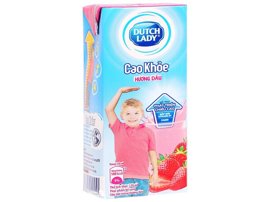 Lốc 4 hộp sữa tiệt trùng hương dâu Dutch Lady Cao Khoẻ 170ml 3