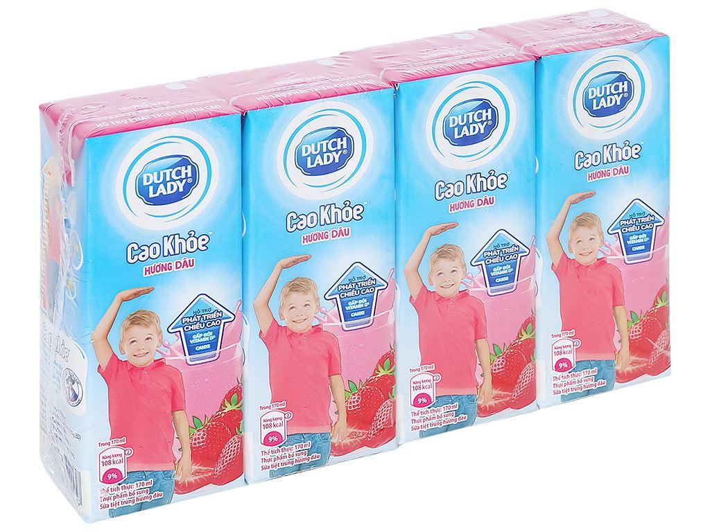 Lốc 4 hộp sữa tiệt trùng hương dâu Dutch Lady Cao Khoẻ 170ml 1