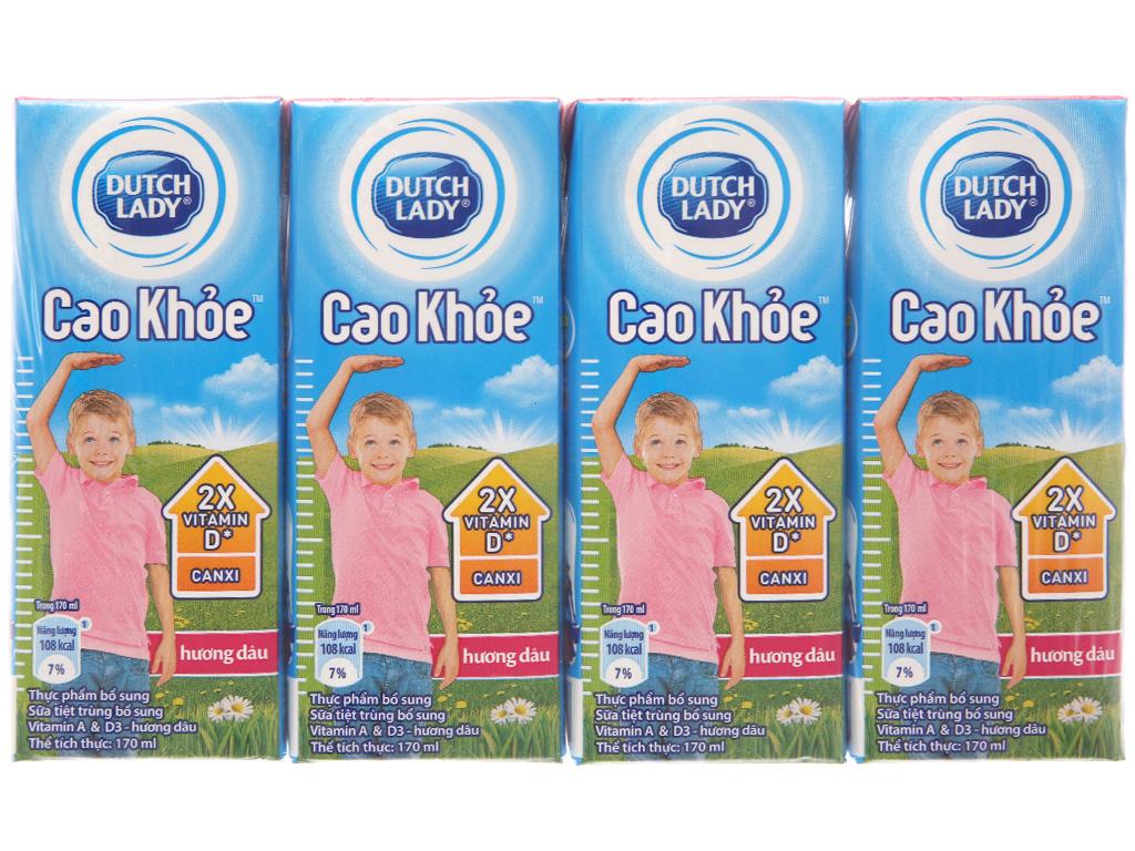 Lốc 4 hộp sữa tiệt trùng Dutch Lady Cao khoẻ hương dâu 170ml 2