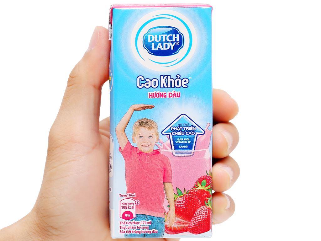 Thùng 48 hộp sữa tiệt trùng hương dâu Dutch Lady Cao Khoẻ 170ml 6