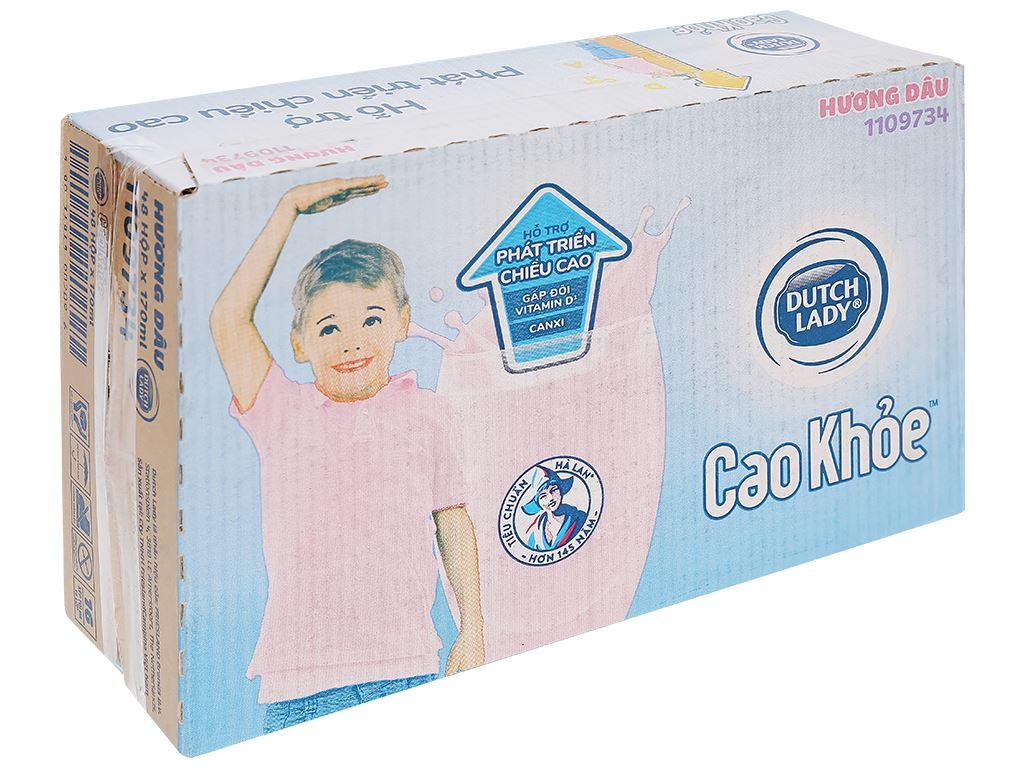 Thùng 48 hộp sữa tiệt trùng hương dâu Dutch Lady Cao Khoẻ 170ml 1