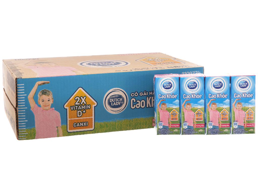 Thùng 48 hộp sữa tiệt trùng Dutch Lady Cao khoẻ hương dâu 170ml 2