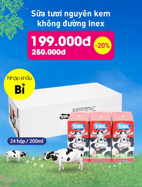 Thùng 24 hộp sữa tươi nguyên kem không đường Inex 200ml