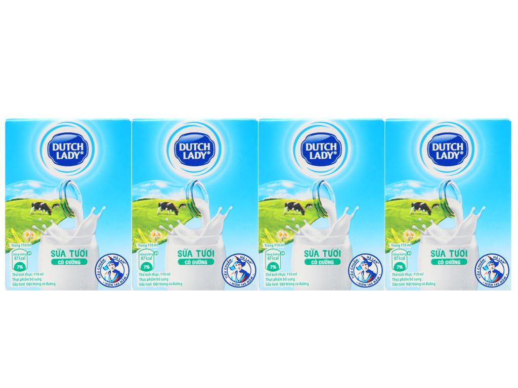 Thùng 48 hộp sữa tươi tiệt trùng có đường Dutch Lady 110ml 8