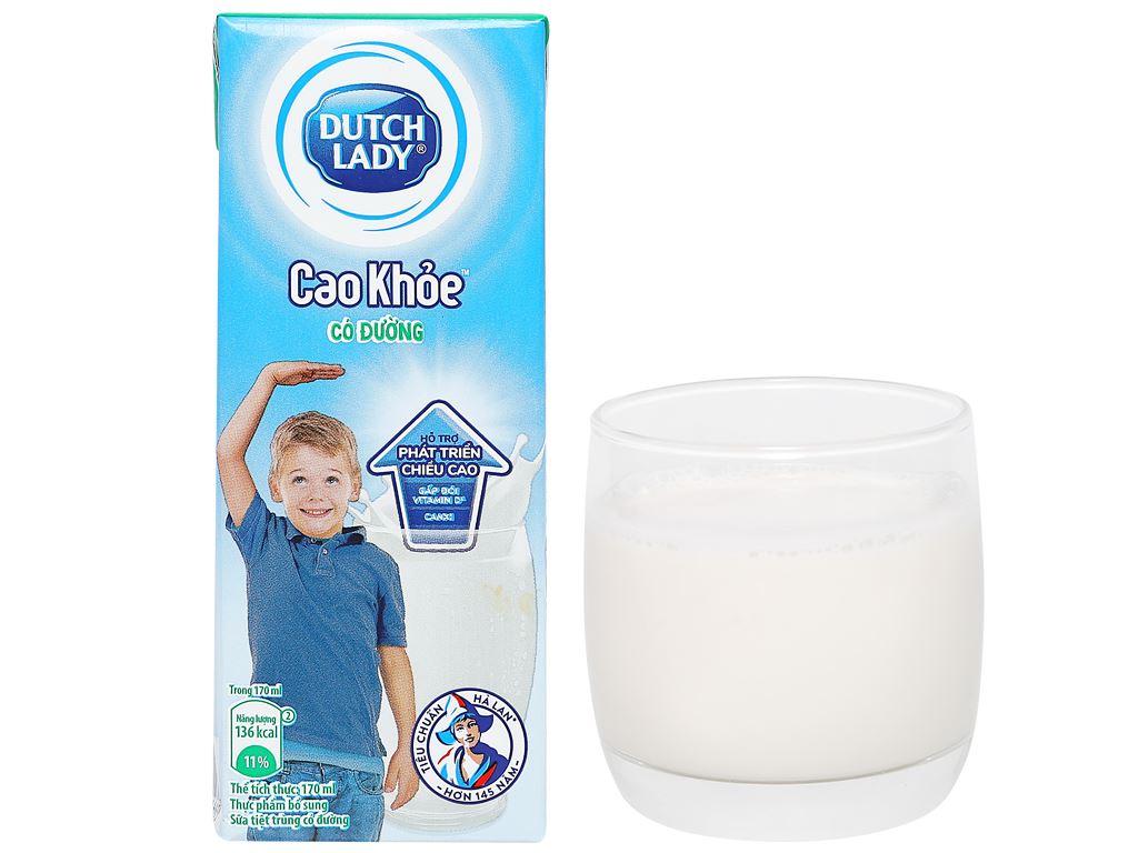 Lốc 4 hộp sữa tiệt trùng có đường Dutch Lady Cao Khoẻ 170ml 14