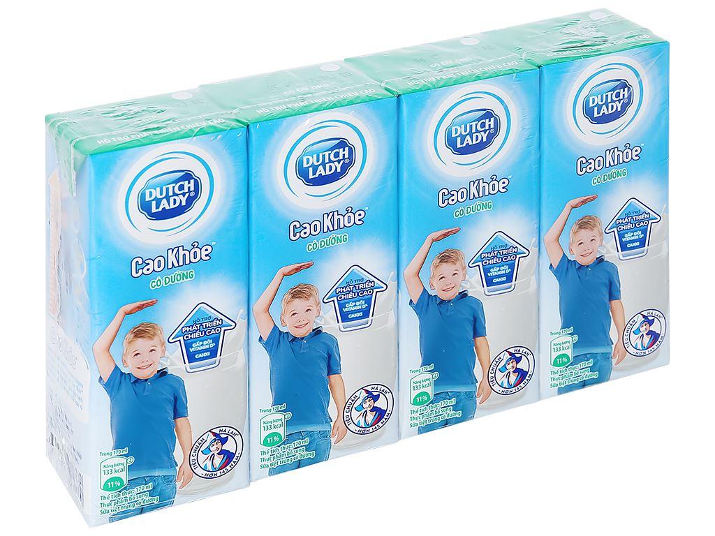 Lốc 4 hộp sữa tiệt trùng có đường Dutch Lady Cao Khoẻ 170ml 1