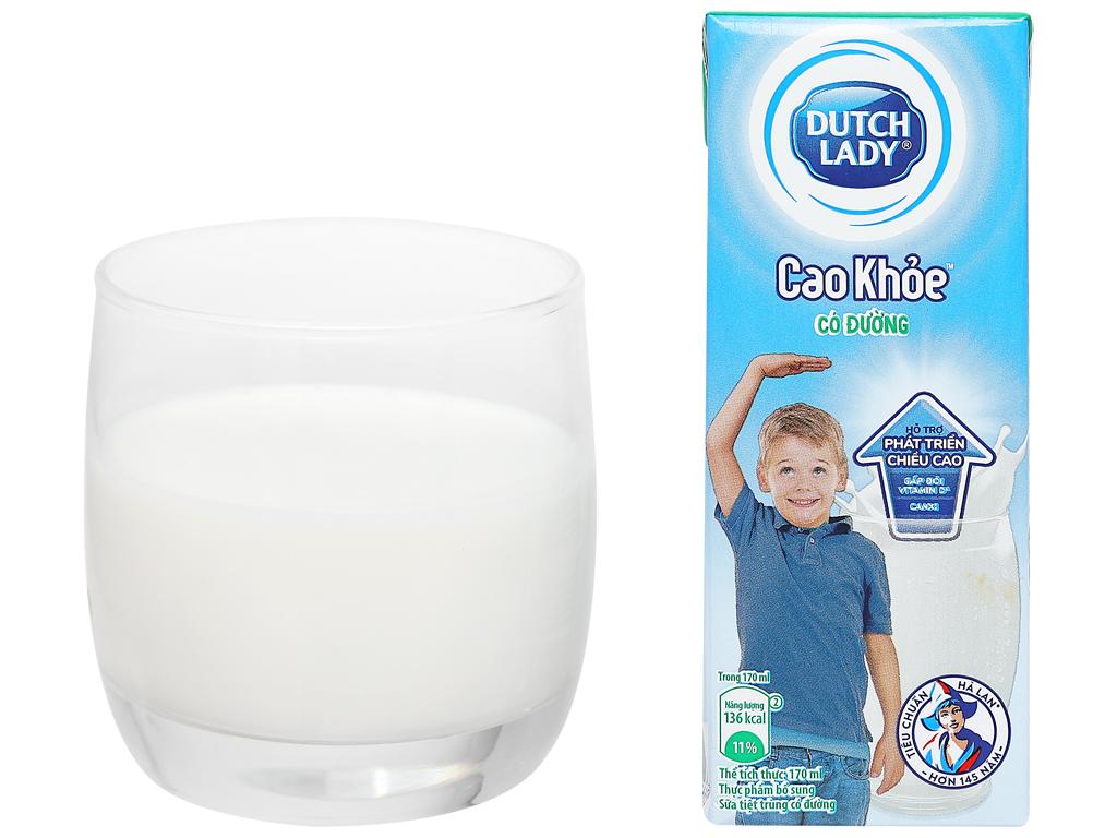 Lốc 4 hộp sữa tiệt trùng có đường Dutch Lady Cao khoẻ 170ml 13
