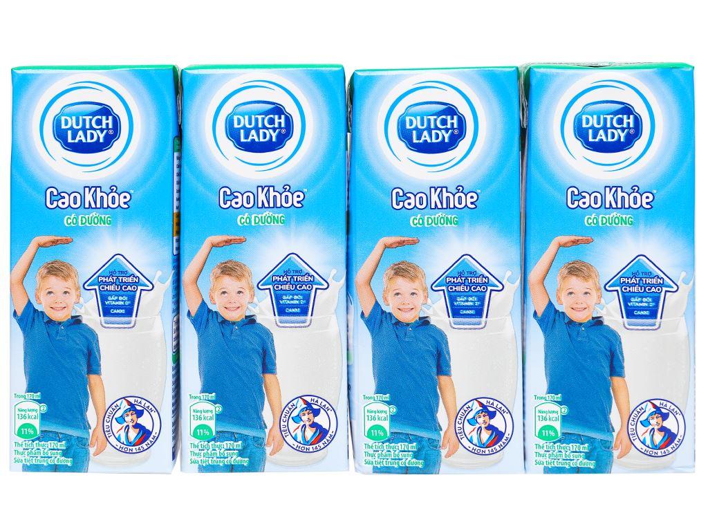 Thùng 48 hộp sữa tiệt trùng Dutch Lady Cao khoẻ có đường 170ml 9