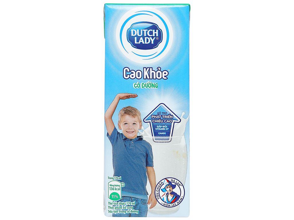 Thùng 48 hộp sữa tiệt trùng Dutch Lady Cao khoẻ có đường 170ml 11