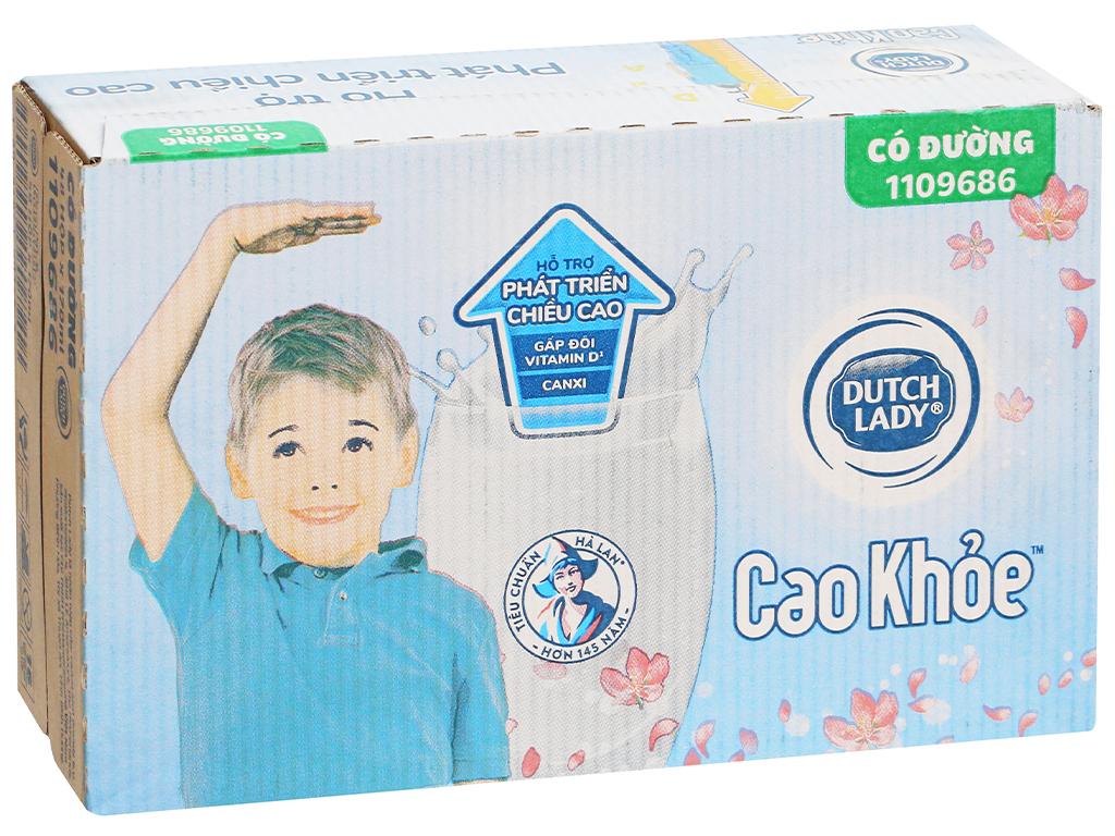 Thùng 48 hộp sữa tiệt trùng có đường Dutch Lady Cao khoẻ 170ml 1