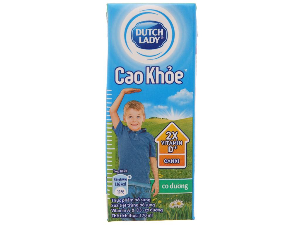 Thùng 48 hộp sữa tiệt trùng Dutch Lady Cao khoẻ có đường 170ml 3