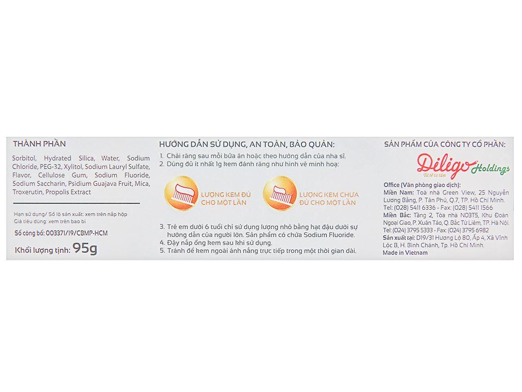 Kem đánh răng Lipzo Herb Gum Protect 95g 4
