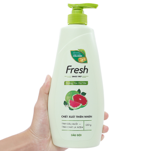 Dầu gội Fresh dưỡng tóc hư tổn giảm rụng tóc 550g