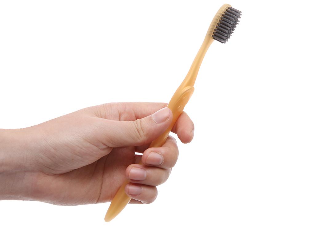 Bộ 3 bàn chải Lipzo Max carex lông chỉ tơ 5