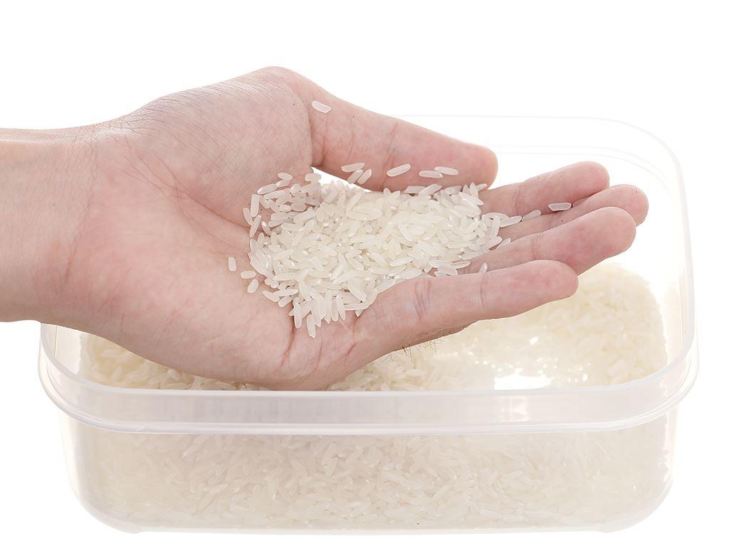 Gạo thơm Vua Gạo Hương Việt túi 5kg 10