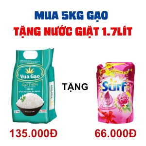 Gạo thơm Vua Gạo đậm đà 5kg
