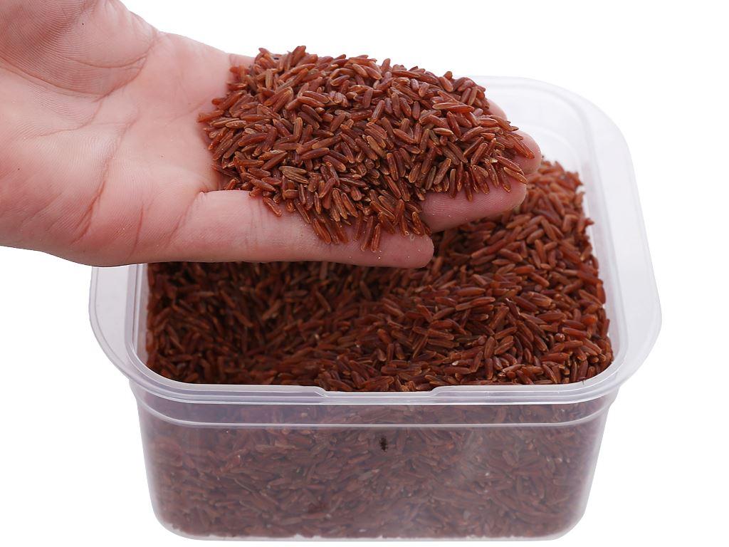Gạo huyết rồng Lotus Rice NutriChoice hộp 0,5kg 5