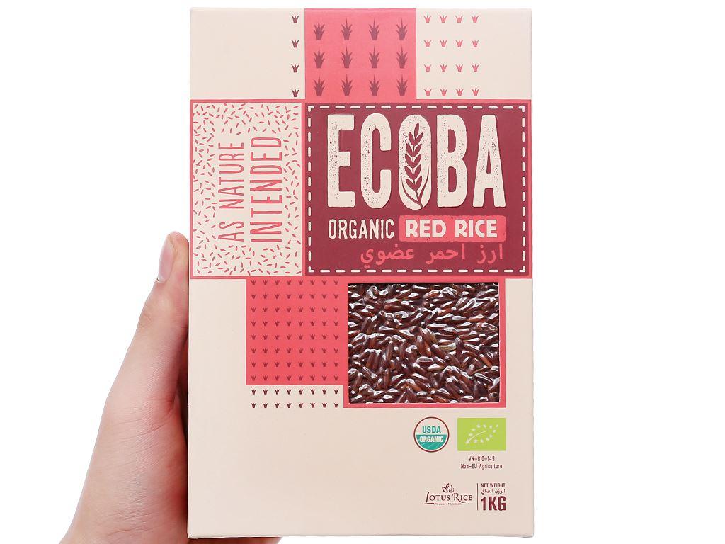 Gạo lứt hữu cơ Ecoba Huyết Rồng hộp 1kg 4