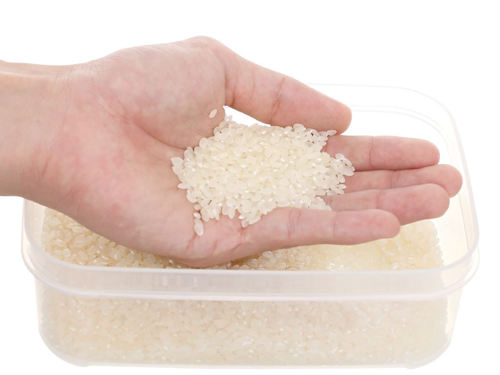 Gạo Japonica Ông Thọ túi 1kg 6